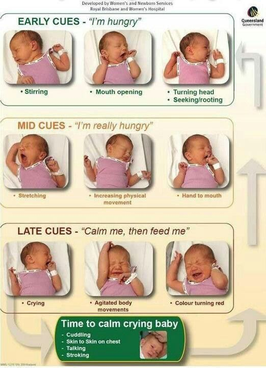 We pinned this because it is important to know the different cries and emotions of an infant.