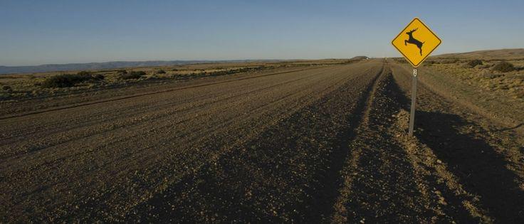 Este es el comienzo de la ruta 40 que te llevará a lo largo del territorio argentino de principio a fin.