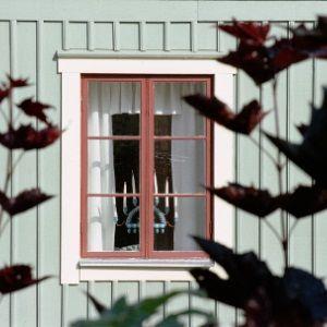 Fönster 164