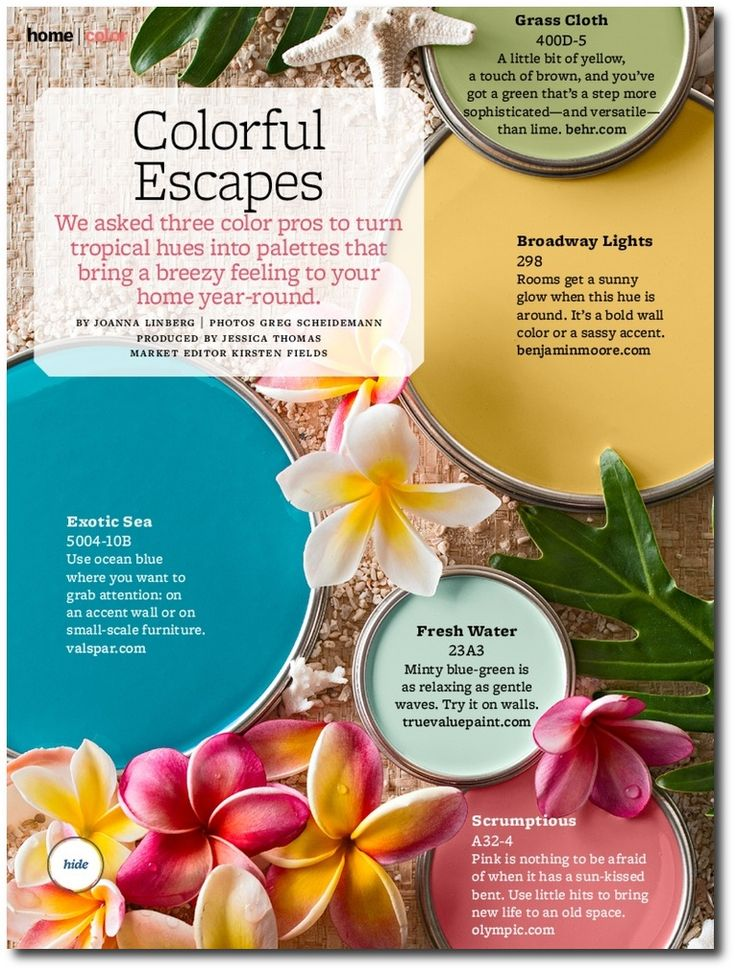 Tropical Colors For Home Interior | Better Home And Gardens Featured Paint Shades Paint Rooms