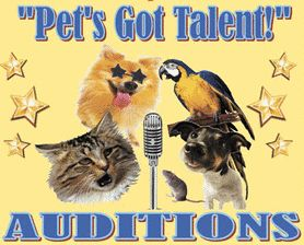Top Ten Pets On America's Got Talent (and Japan Too) (VIDEOS)