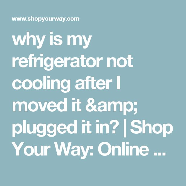 why is my refrigerator not cooling after I moved it & plugged it in? | Shop Your Way: Online Shopping & Earn Points on Tools, Appliances, Electronics & more