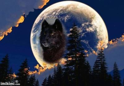 Fekete Farkas teleholdi éjszakában