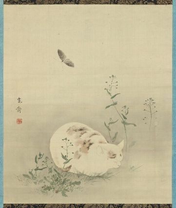 Cat and Butterfly 睡猫図 (酔猫胡蝶図) Japanese, Late 19th century Mori Kansai, Japanese, 1814–1894