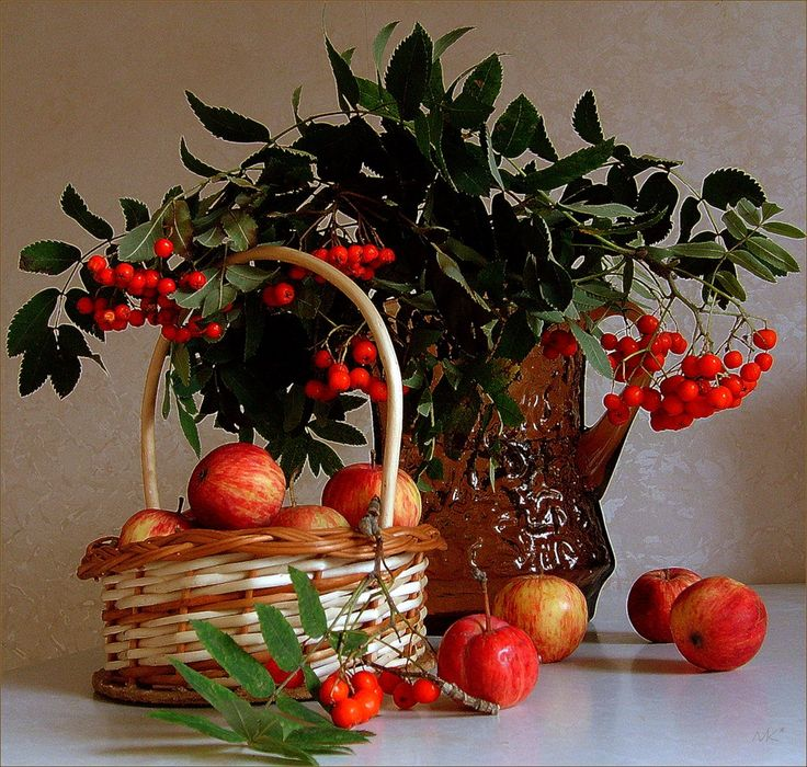 спортивках кепках картинки рябины яблок отеческих