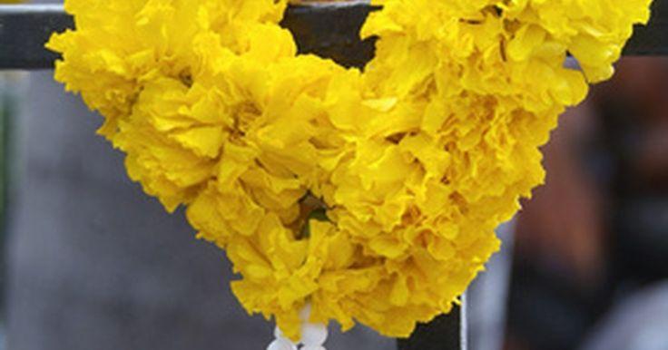Como fazer guirlandas de casamento indianas. Quando indianos se casam de modo tradicional, eles dão um ao outro longos colares de flores em uma cerimônia chamada Jaimala, também conhecida como troca de guirlandas. O Jaimala simboliza o respeito do casal e a promessa de aceitarem um ao outro. Guirlandas de casamento são feitas com flores de cores vibrantes amarradas firmemente para um grande ...
