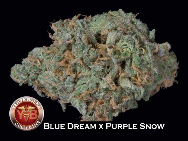 67 best Strains images on Pinterest   Buy weed, Weed ...   640 x 480 jpeg 45kB