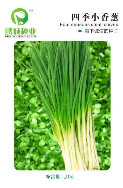 The original packaging Vegetable seeds The four seasons small chive seed The balcony of pot The four seasons can be 10 g/package
