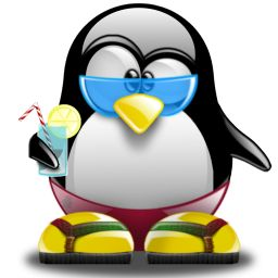 imagenes pinguino playero - Buscar con Google