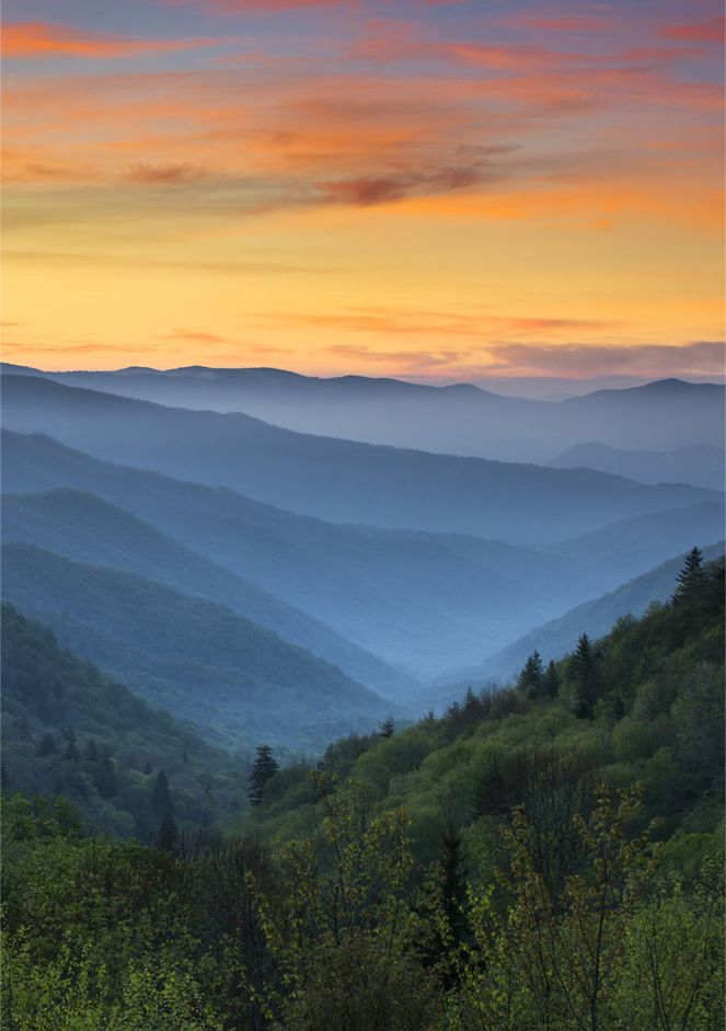 Great Smoky Mountains National Park, United States: Been there and rode a bicycle over those in summer of 2010 on Martin's Ride To Cure Cancer (still feel em :).