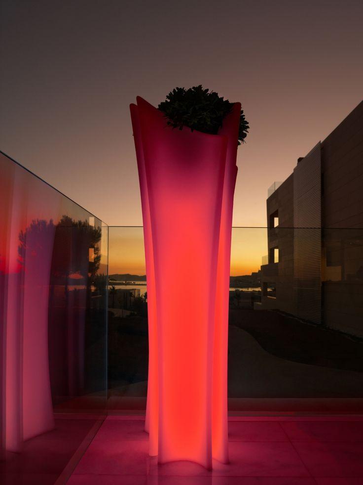 Plant In Design Vase