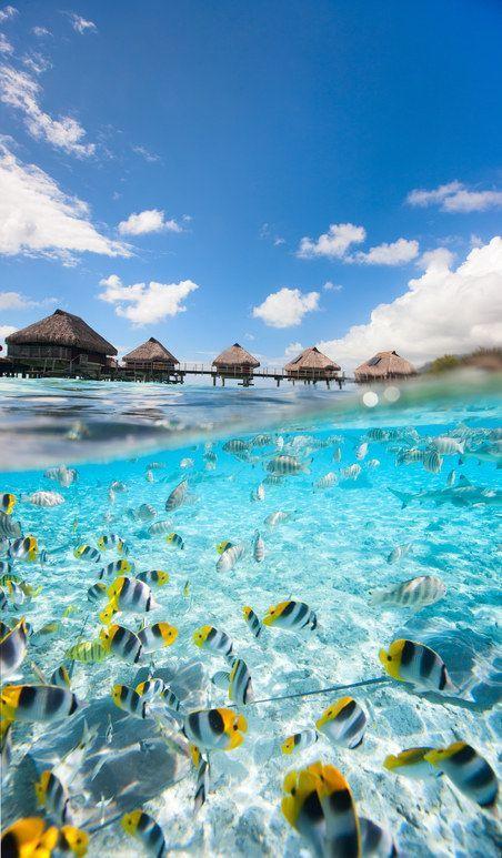 Packen Sie Ihre Sommerurlaubstasche ein und wir sagen Ihnen, wohin Sie gehen