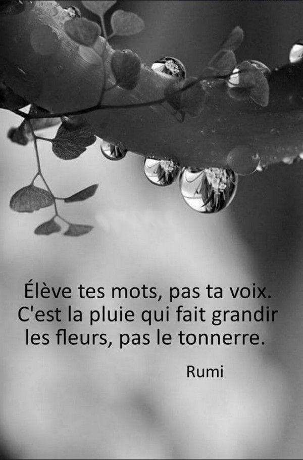 Élève tes mots, pas ta voix. C'est la pluie qui fait pousser les fleurs pas le tonnerre.