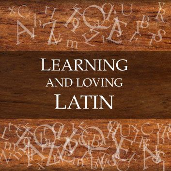How to learn roman language
