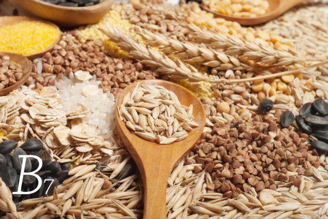Vitamina B7. Conosciuta anche come biotina, viene spesso definita in modo scorretto B8. Tra le otto vitamine del gruppo B è la meno conosciuta, anche se svolge il compito fondamentale di aiutare il nostro organismo a produrre energia, intervenendo nel processo di trasformazione dei carboidrati in glucosio, un vero e proprio carburante per il nostro corpo.