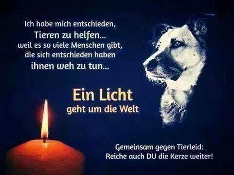 Ein Licht geht um die Welt !