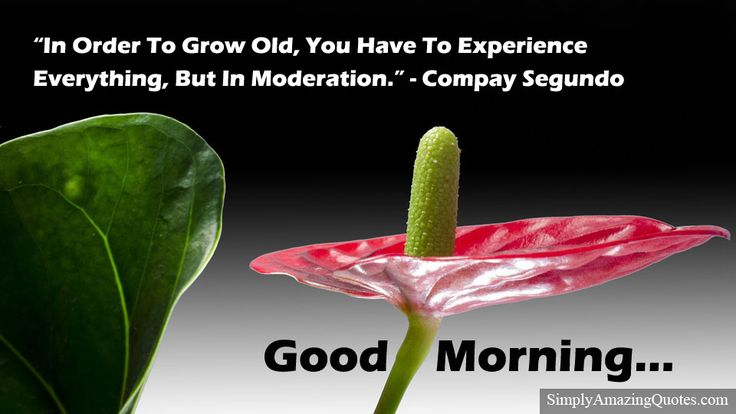 Good Morning #morning #goodmorning #goodmorningworld #morningpost#quoteoftheday #sundaymorning #motivationalquote #inspirationalquote https://simplyamazingquotes.com/in-order-to-grow-old.html