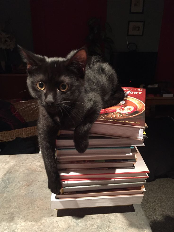 order of nicky charles books
