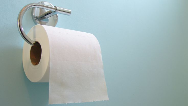 Every bathroom in Britain to receive complimentary UKIP manifesto