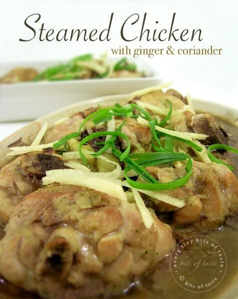 158 best steamed food images on pinterest steamed food chinese steamed chicken with ginger coriander forumfinder Gallery