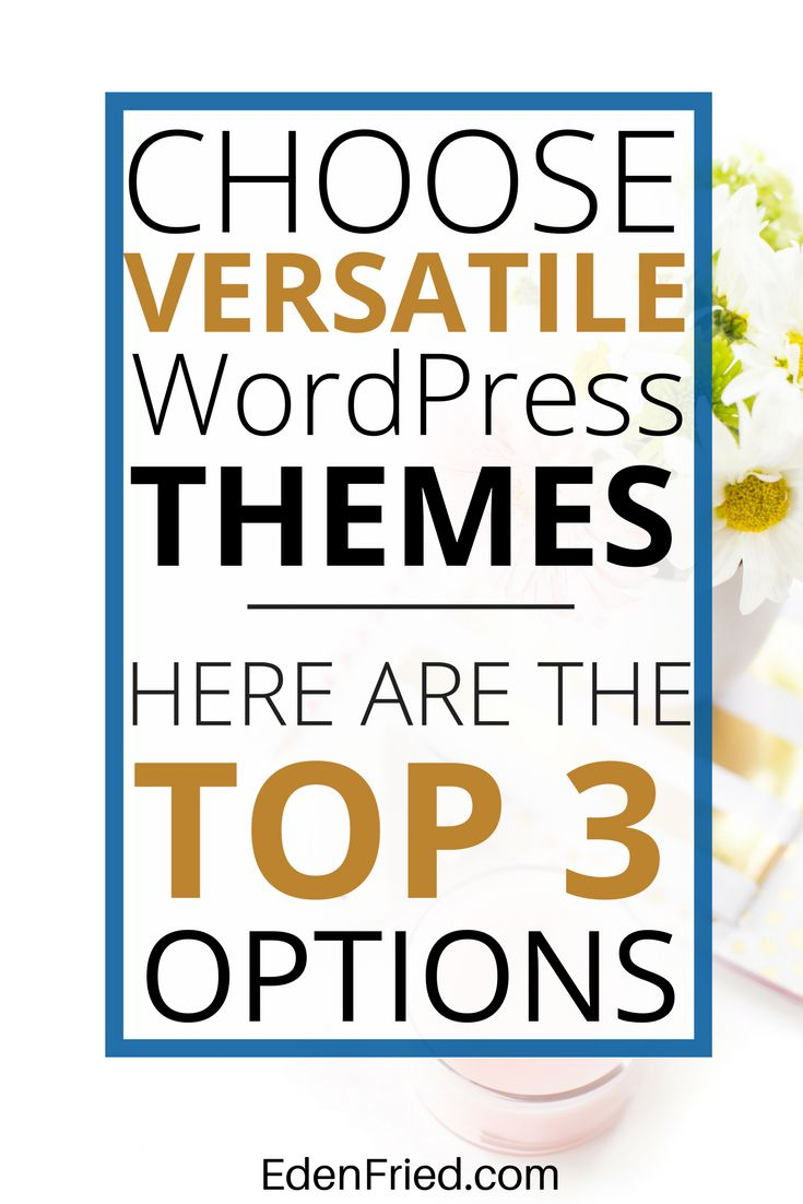 Choose from the best premium WordPress themes for your next site.