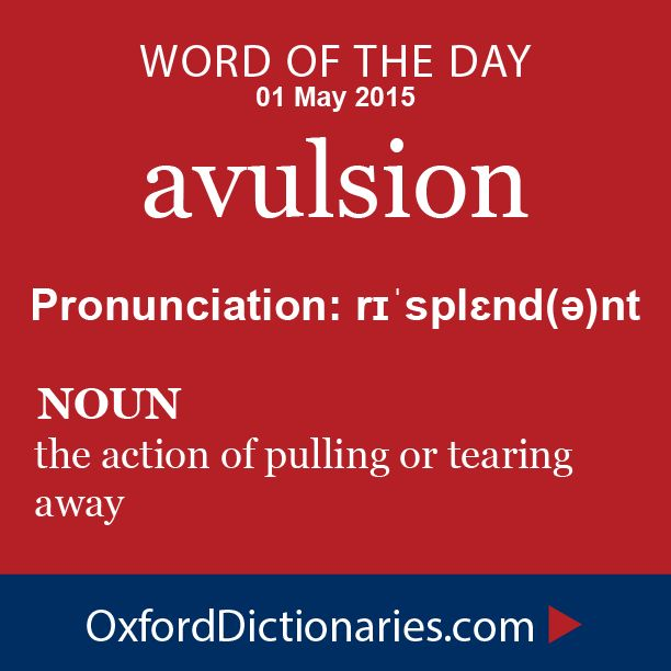 Word of the Day: avulsion Click through to the full definition, audio pronunciation, and example sentences: http://www.oxforddictionaries.com/definition/english/avulsion #WOTD   #wordoftheday