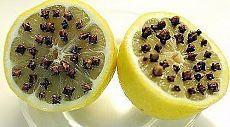 ПРОВЕРИМ? ГЕНИАЛЬНОЕ СРЕДСТВО ОТ КОМАРОВ!  Лимон + гвоздика (приправа): ставим возле кровати и можно спать с открытыми окнами на даче!!! Все гениальное просто!
