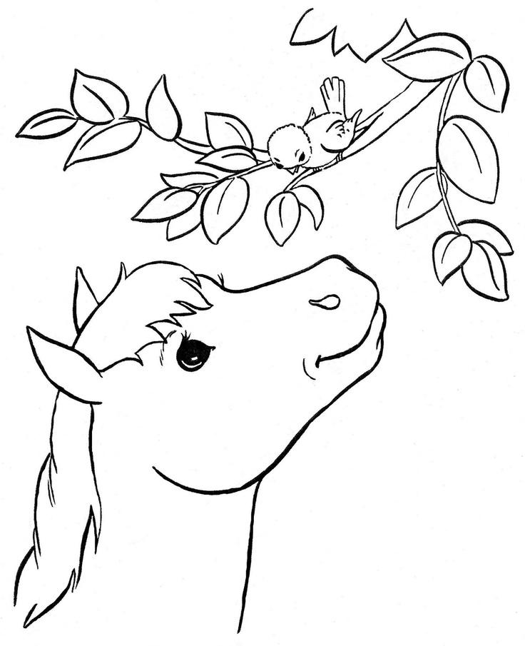 our pony pal donkeysembroidery patternscoloring booksunicorns