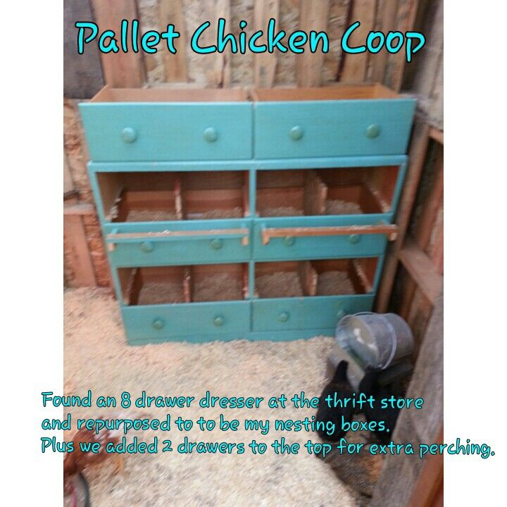 Pallet Chicken Coop Found a cheap dresser at the thrift store and turned it into an 8 box nesting condo for my chickens. Plus I added 2 drawers on top for extra perching and nesting. I love it.