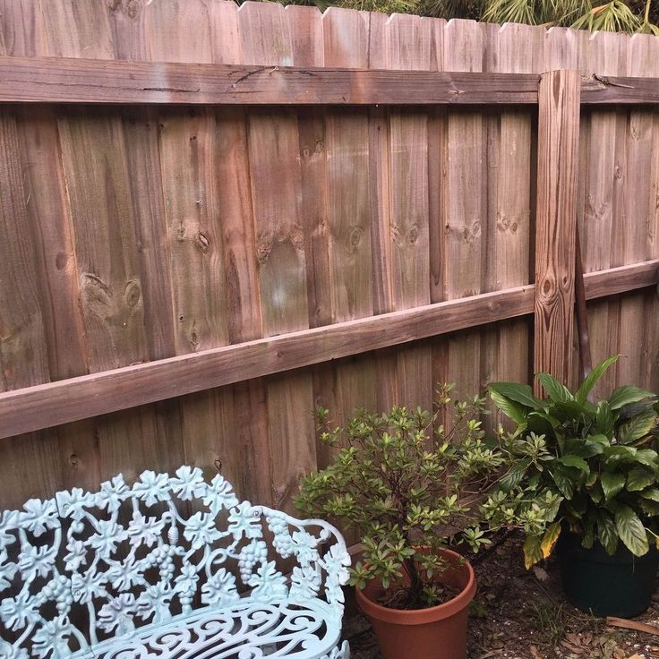 Instead of painting that boring fence, this fix is easy (& gorgeous!)