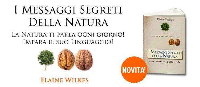I Messaggi Segreti della Natura..nascosti in bella vista è il nuovo libro di Elaine Wikels, ed in omaggio l'Illuminante Cap.2 - La Natura ci fa da specchio- che spiega...