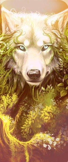 Wonderful wolf art <3 Alle Größen | sunkissed_by_alectorfencer-d5ayett | Flickr - Fotosharing!