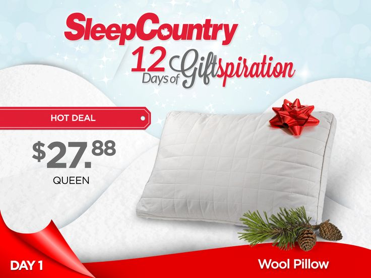 Day 1: Our Wonderful Wool Pillow