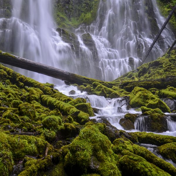 Check out this slideshow Taking in the Magic at Proxy Falls in this list 16 Natural Wonders