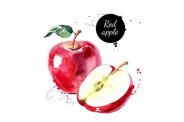 Watercolor Fruits & Vegetables Set by Elena Pimonova on @creativemarket
