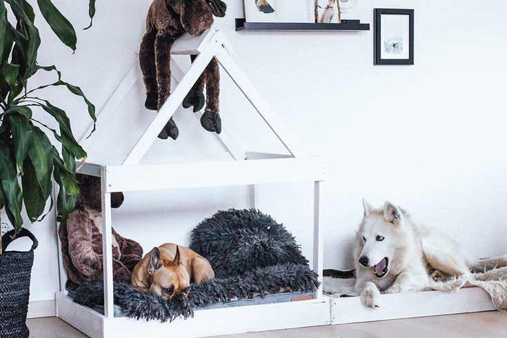 Wie man eine Hundehütte selber bauen kann, zeige ich euch heute auf meinem Interiorblog. Außerdem zeige ich euch die Wand Dekoration.