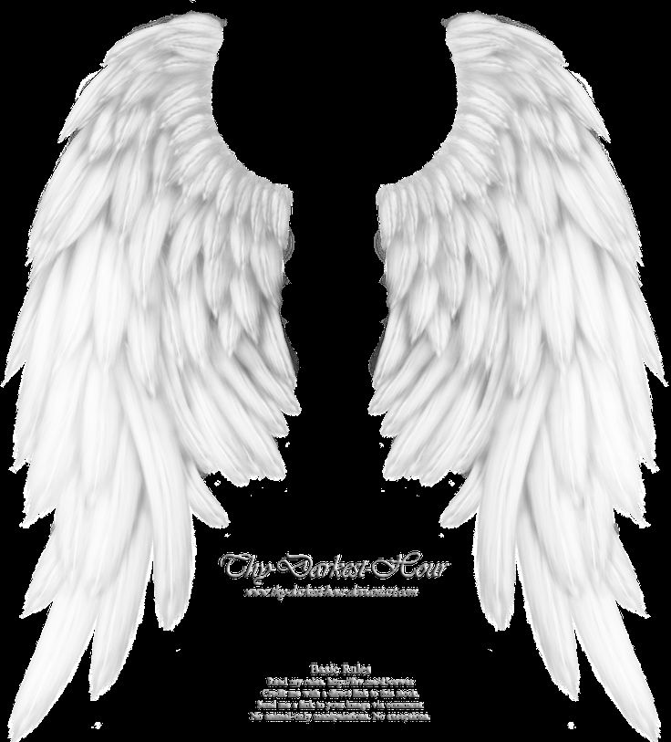 14 Best Images About Angel Wings On Pinterest Angels Pi