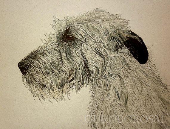 Irish Wolfhound original drawing by ouroboros81 on Etsy