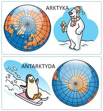 kolorowanka foka matematyczna - Szukaj w Google
