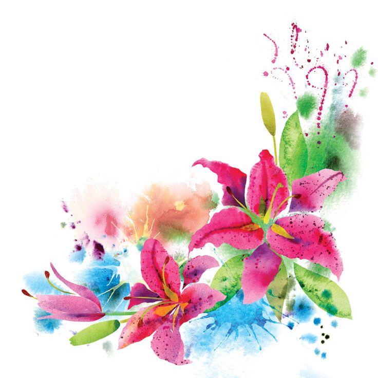 цветы маки рисунки - Поиск в Google