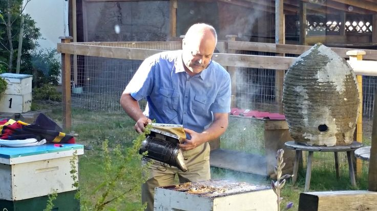 Visit the Honeybee Centre and their new Beestro!