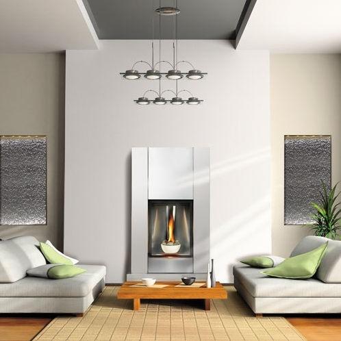 Napoleon Tureen Direct Vent Gas Fireplace - sheek pretty