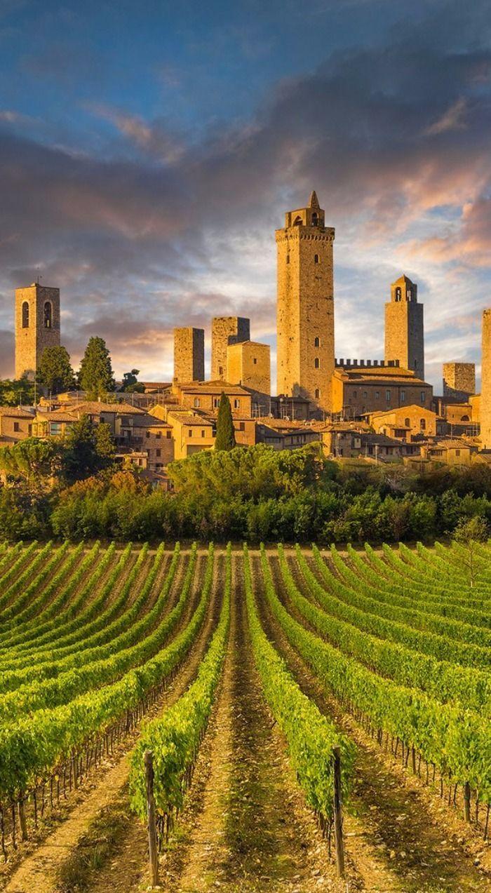 San Gimignano com vinhedos ao redor, na região da Toscana, Itália.  Fotografia: Maudib em Getty Images.