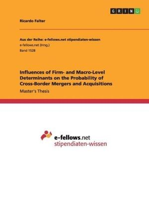 Influences of Firm- and Macro-Level Determinants on the Probability of