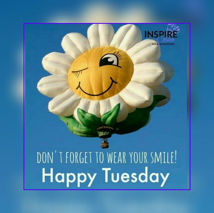 142 best tuesday images on pinterest happy tuesday dont forget to wear your smile m4hsunfo