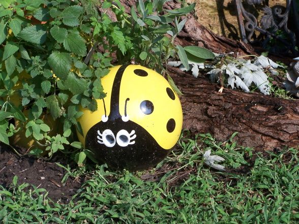 Bowling Ball Yard Art Ladybug | ... - the lady bug is actually a painted bowling ball., Yards Design
