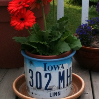 Actually, I didn't make this, Norman did!!  My old Iowa license plates turned into a beautiful planter.