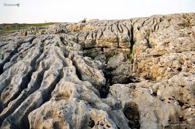 Câmpurile de lapiezuri Cleopatra și Afrodita din Ponoarele sunt unice în România prin dimensiunile, compactitatea și altitudinea la care se găsesc (sub 600 metri), ele fiind caracterstice Munților Alpi.  Lapiezurile sunt întâlnite în toate regiunile carstice din ţara noastră. Se remarcă, prin varietate şi extindere câmpurile de lapiezurile de la Ponoarele (Podişul Mehedinţi), cele din Munţii Mehedinţi, Munţii Bihor, Munţii Pădurea Craiului, Munţii Vâlcan, Munţii Locvei şi Aninei.