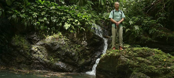 Missing Dial - National Geographic Channel -- In July of 2014 Cody Roman Dial Jr., the son of legendary explorer, Roman Dial Sr., vanished trying to complete a solo trek in the most dangerous jungle in Central America.