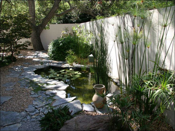 17 best images about backyard on pinterest gardens for Small pond ideas